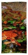 Autumn Mix Beach Towel