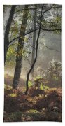 Autumn Morning Beach Towel