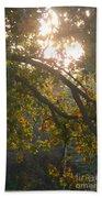 Autumn Morning Glow Beach Towel