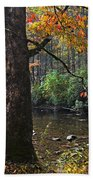 Autumn Mountains Beach Towel