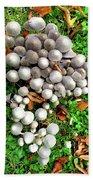 Autumn Mushrooms Beach Towel