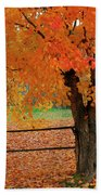 Autumn Near New Germany, Nova Scotia Beach Towel