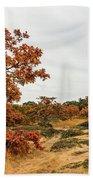 Autumn Oaks 3 Beach Towel
