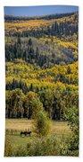 Autumn On A Colorado Range Beach Towel