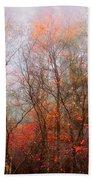 Autumn On The Mountain Beach Towel