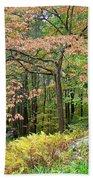 Autumn Paints A Dogwood And Ferns Beach Towel
