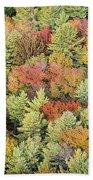 Autumn Palette Beach Towel