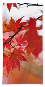Autumn Pastel Beach Towel