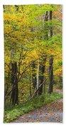 Autumn Path Beach Towel