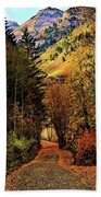 Autumn Path To Stewart Falls Beach Towel
