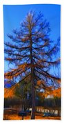 Autumn Pine Tree Beach Towel
