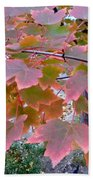 Autumn Pink 2 Beach Towel