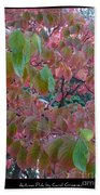 Autumn Pink Poster Beach Towel