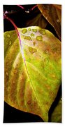 Autumn Rain Beach Towel