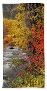 Autumn Rapids Beach Towel