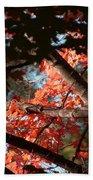 Autumn Red Trees 2015 02 Beach Towel