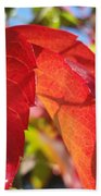 Autumn Reds Beach Towel