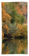 Autumn Reflection 41 Beach Towel