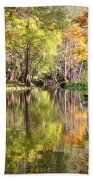 Autumn Reflection On Florida River Beach Towel by Carol Groenen