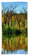 Autumn Reflections On Salt Creek IIi Beach Towel