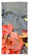 Autumn River Landscape Red Fall Leaves Beach Towel