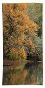 Autumn Riverbank Beach Towel