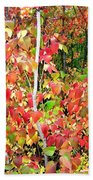 Autumn Sanctuary Beach Towel