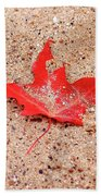 Autumn Sand Beach Sheet