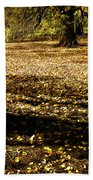 Autumn Scatterlings Beach Towel
