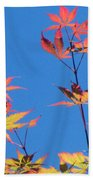 Autumn Skies Beach Towel