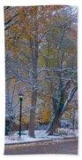 Autumn Snow Beach Towel by James BO  Insogna