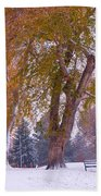 Autumn Snow Park Bench   Beach Towel by James BO  Insogna