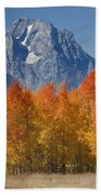 Autumn Splendor In Grand Teton Beach Towel