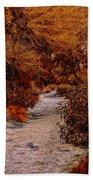 Autumn Stroll No23 Beach Towel