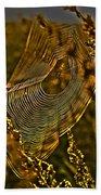 Autumn Sunrise With Spider Web Beach Towel