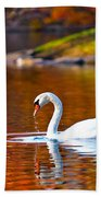 Autumn Swan Lake Beach Towel