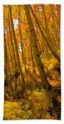 Autumn Trail Beach Towel