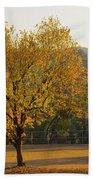 Autumn Tree At Sunset Beach Towel