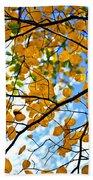 Autumn Tree Branches Beach Towel by Elena Elisseeva