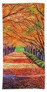 Autumn Tree Lane Beach Towel