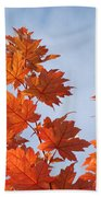 Autumn Tree Leaves Art Prints Blue Sky White Clouds Beach Towel