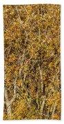Autumn Tree Tangle Beach Towel