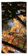 Autumn Trees 2015 Pa 01 Beach Towel
