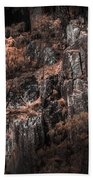 Autumn Trees Growing On Mountain Rocks Beach Towel