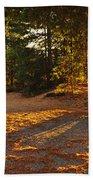 Autumn Trees Near Lake Beach Towel
