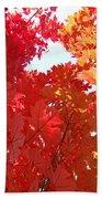 Autumn Trees Red Orange Fall Trees Art Baslee Troutman Beach Towel