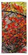 Autumn Trees Rock City Beach Towel