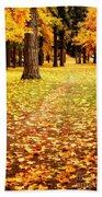 Autumn Walk In Spokane Beach Towel