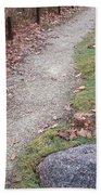 Autumn Walk Beach Towel