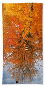 Autumn With Colorful Foliage And Water Reflection 19 Beach Towel
